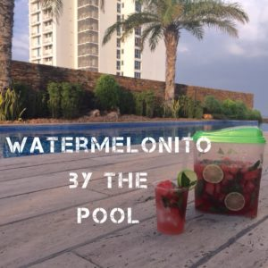Watermelonito mixologist.events